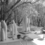 nepenthes | Manon Berthellot | Manon Berthellot | Atelier | Terre et Terres | 1 décembre 2020