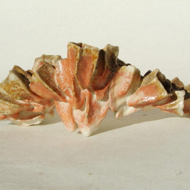papillon4 | Manon Berthellot | Papillon de mer | Produit | 70,00€ | 6508 | Concrétion céramique, pièce unique | Manon Berthellot | Terre et Terres | 10 décembre 2020